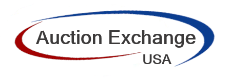 Auction Exchange USA